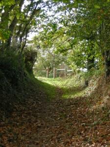 chemin creux aux environs du château d'eau